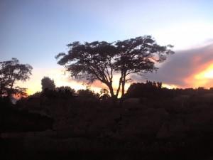 Buchi sunset - kitweonline